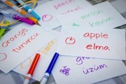 کلمات زبان ترکی استانبولی